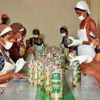 Новый завод чая Basilur
